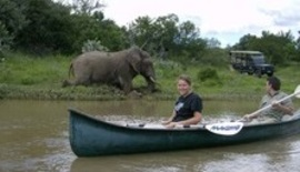 Canoeing With Elephant